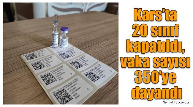 Kars'ta 20 sınıf kapatıldı, vaka sayısı 350'ye dayandı