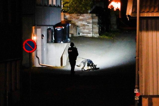 2021-10-13T193448Z_652952050_RC279Q91TL0U_RTRMADP_3_NORWAY-CRIME
